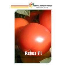 Rebus F1 150 semena