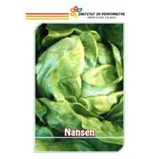 Nansen 20g
